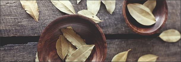 носогубные складки маска из лаврового листа