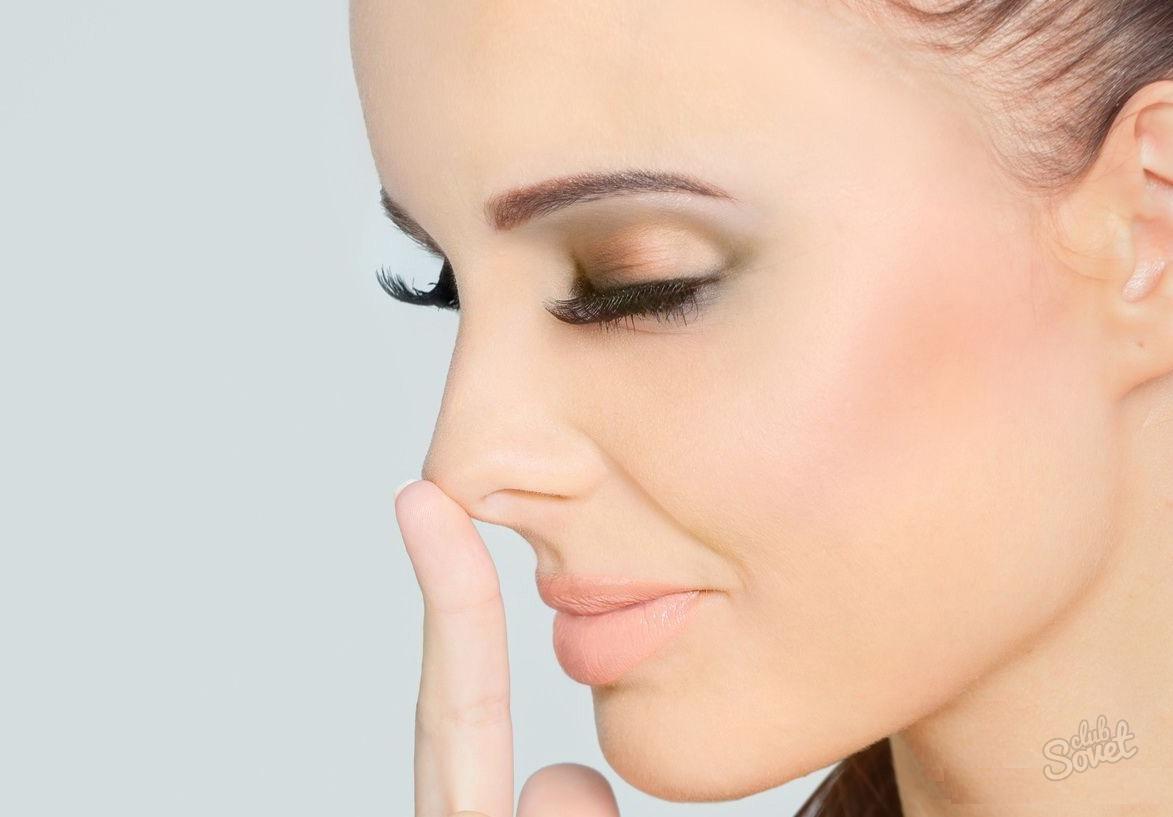 нос перегородка главная