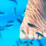пилинг рыбками
