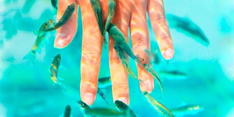 Пилинг рыбками на руке