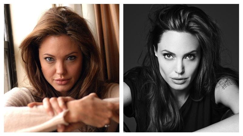 комки биша, Анджелина Джоли