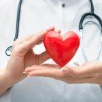 Доктор стетоскоп и сердце