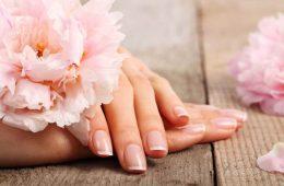 Руки женские с цветком