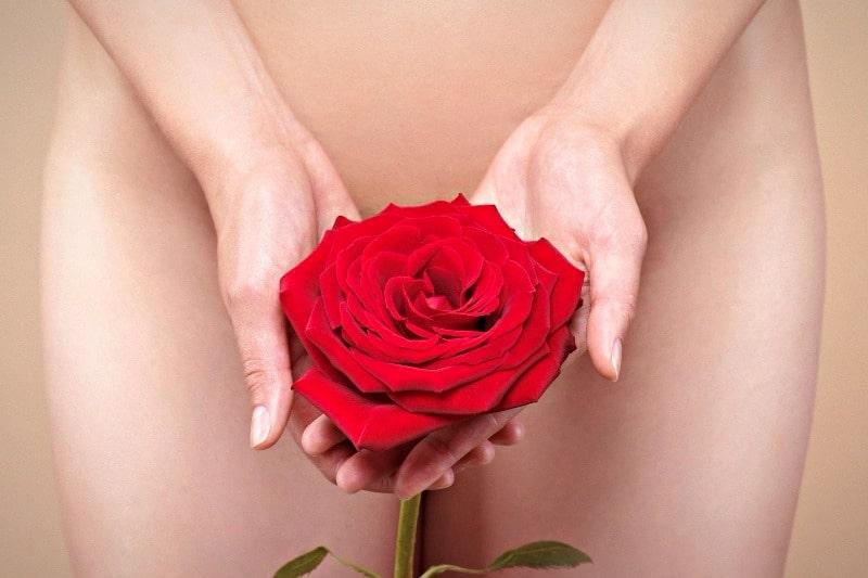 Роза в руках перед интимной зоной женщины